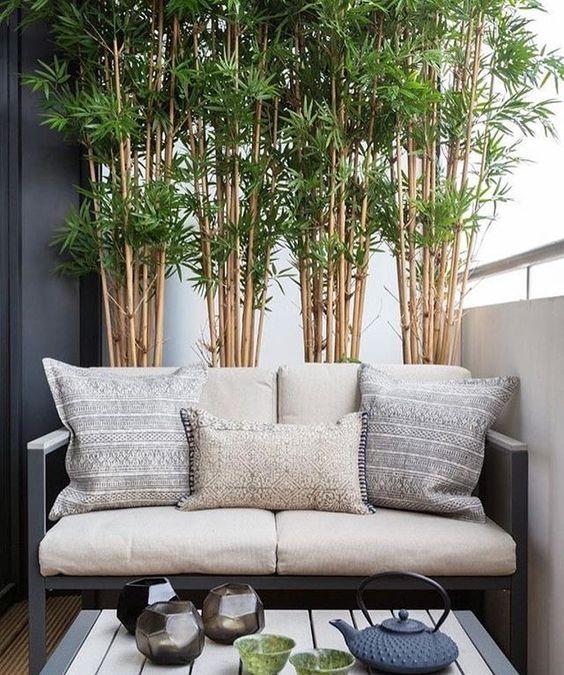 ban cong xanh phong khach 8 - #35 Kiểu ban công xanh [ĐẸP] ở chung cư, nhà ở năm 2020