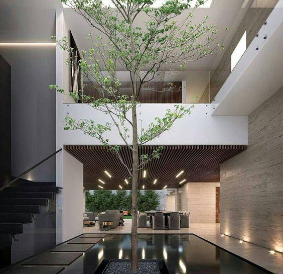 tieu canh cau thang rong 10 - #33 Mẫu tiểu cảnh cầu thang đẹp [trang trí] nhà ở năm 2021