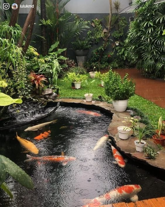 tieu canh san vuon nhat ban 3 - #55 Mẫu tiểu cảnh sân vườn ĐẸP được [khao khát] nhất 2020
